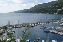 Adriatica nel Golfo di Trieste