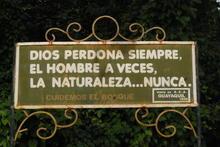 Foresta pietrificata, Ecuador