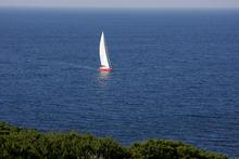 Adriatica in Sardegna