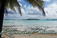 Ritorno in Polinesia, il documentario